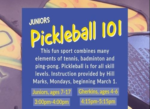 youth pickleball