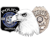 Badge Eagle Patch